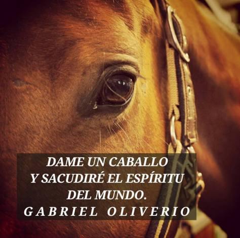 caballo 3.jpg