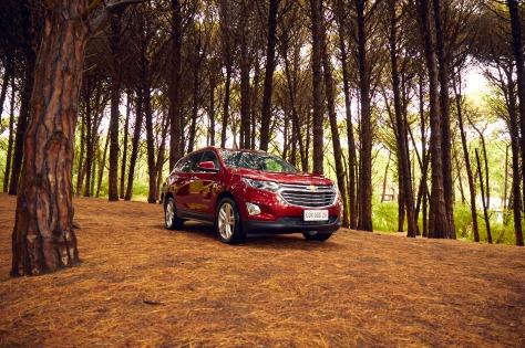 Chevrolet Equinox 1.jpg